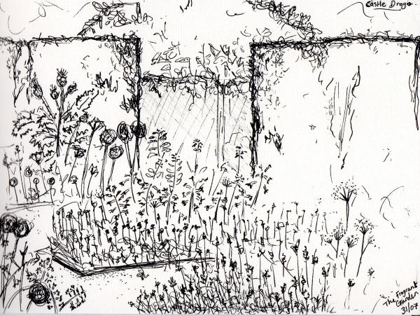 Castle Drogo - Fragrant Garden