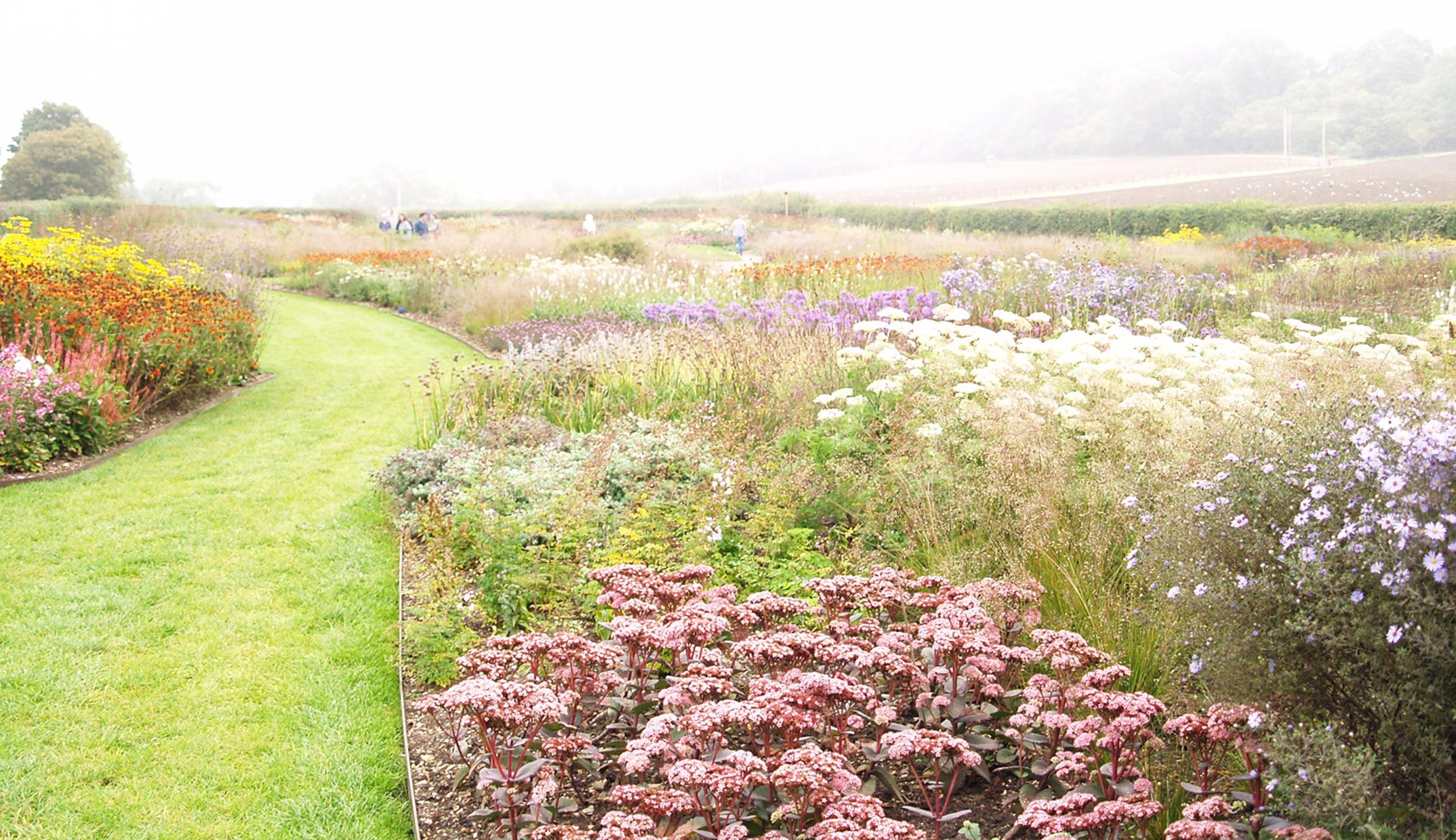 Places piet oudolf hauser wirth working plot for Piet oudolf serpentine gallery