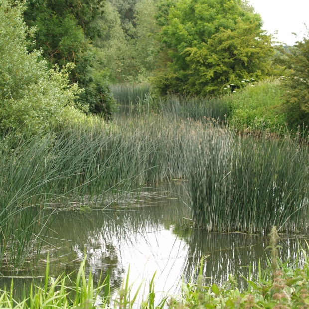 river-stamford-lincolnshire.jpg